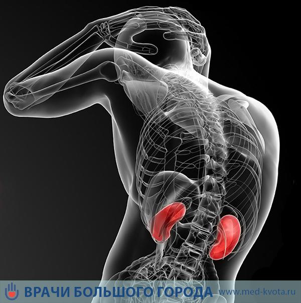 Лечение рака почки в Москве: клиники, стоимость и цены, отзывы