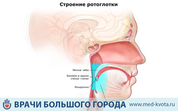 Лечение рака гортани радиологией и артериальной химиотерапией