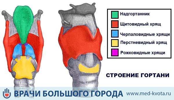 Лечение рака горла - лучевая терапия при раке гортани, метастазах (3 и 4 степень)