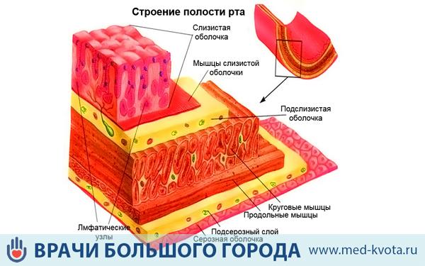 Лечение слизистой полости рта после лучевой терапии — АНТИ-РАК