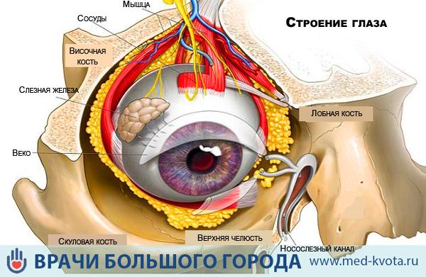 Меланома глаза сколько живут